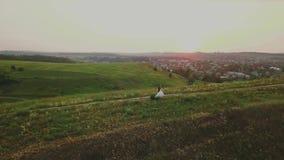 Par av ungdomarsom går i solnedgångsommaraftonen i fält; flyg- sikt arkivfilmer