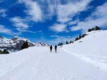 par av utflyktsdeltagare som går på snöskor och pinnepoler på den vita snön av vintern av en bana av ett snöig berg royaltyfria bilder