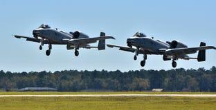Par av vårtsvin för flygvapen A-10 Royaltyfri Foto