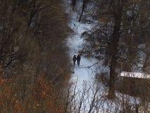 Par, en man och en kvinna som går i skogen i vinter Dystert vinterskoglandskap royaltyfri foto