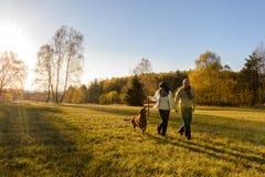 Par går hunden i bygdhöstsolnedgång Fotografering för Bildbyråer
