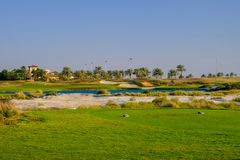 Golf Course at Saadiyat Island, Abu Dhabi, UAE royalty free stock photography