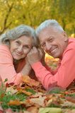 Par i höstpark Fotografering för Bildbyråer