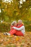 Par i höstpark Arkivfoton