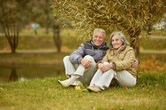 Par i höstpark Royaltyfri Foto