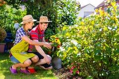 Par i trädgården som planterar blommor Arkivfoto