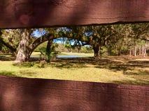 Par la barrière rustique aux arbres et au lac Photographie stock libre de droits