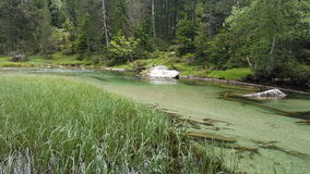 Par la rivière Photographie stock libre de droits