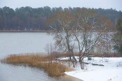 Par le lac images libres de droits