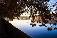 Par les branches de l'arbre vous pouvez voir une rivière à l'aube Photos stock