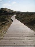 Par les dunes Photographie stock libre de droits