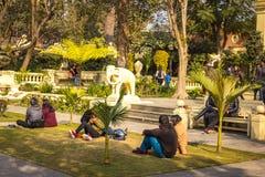 Par lub miłości ptaki przy ogródem sen w Kathmandu, Nepal Fotografia Stock