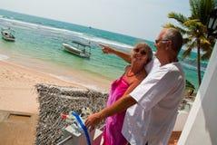 par mature att peka för hav Arkivfoto
