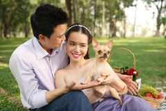 Par med en Chihuahuahund Royaltyfri Foto