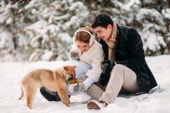 Par med en hund i vinterskog fotografering för bildbyråer