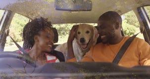 Par med hunden i bil på parkerar lager videofilmer