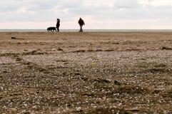 Par med hunden på sanden Arkivfoton