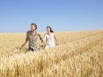 par potomstwa śródpolni szczęśliwi pszeniczni zdjęcie royalty free