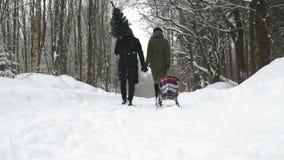 par potomstwa parkowi chodzący godziny krajobrazu sezonu zimę zdjęcie wideo
