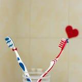 Par som är förälskade av två tandborstar St Valentindag Royaltyfria Bilder