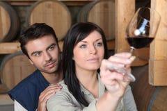 Par som analyserar ett vin Fotografering för Bildbyråer