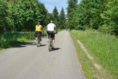 Par som cyklar i Perlacheren Forst arkivbild