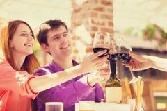 Par som dricker vin Fotografering för Bildbyråer