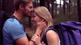 Par som fotvandrar till och med en skog arkivfilmer