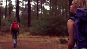 Par som fotvandrar till och med en skog stock video