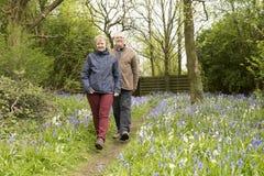 Par som går bland blåklockor Royaltyfri Bild