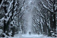 Par som går i en snöig gränd fotografering för bildbyråer