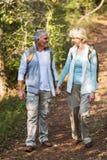 Par som går skogen Royaltyfri Fotografi