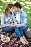 par som har picknicken Royaltyfri Fotografi