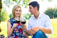 Par som har picknickintelligensrött vin på äng Royaltyfria Foton