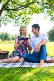 Par som har picknickintelligensrött vin på äng Arkivbild