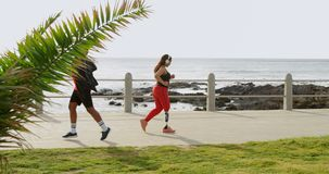 Par som joggar på promenad på en solig dag 4k arkivfilmer