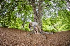 Par som kysser under ett stort träd arkivbilder