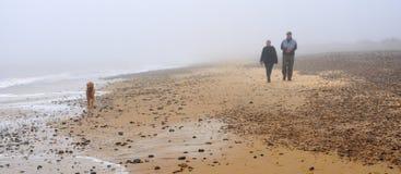 Par som promenerar stranden med hunden i dimman Arkivfoto