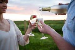 Par som rostar champagne i fält royaltyfri fotografi
