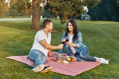 Par som rostar med vinexponeringsglas på picknicken arkivbild