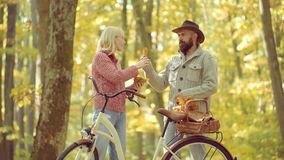 Par som spelar i paren för höstskoghöst Romantiker- och f?r?lskelsebegrepp arkivfilmer