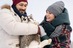 Par som spelar med Husky Puppy fotografering för bildbyråer