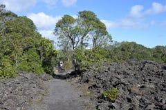 Par som trekking i den Rangitoto ön Nya Zeeland royaltyfria foton