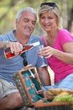 par som tycker om picknicken Royaltyfri Bild