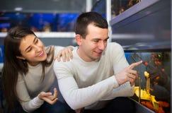 Par som väljer akvariefisken Arkivbilder