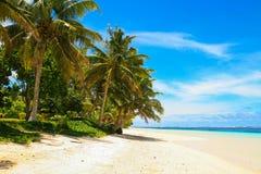 Paraíso arenoso blanco de la playa de Manase, palmeras tropicales y laguna del océano de la turquesa, isla de i de Savai ' imágenes de archivo libres de regalías