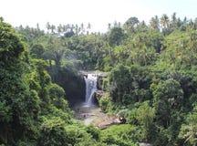 Paraíso da cachoeira Fotos de Stock Royalty Free