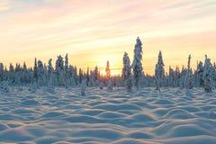 Paraíso da neve Fotografia de Stock Royalty Free