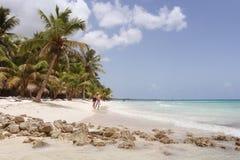 Paraíso da República Dominicana da ilha de Saona imagem de stock