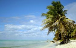 Paraíso de Caribean Imagen de archivo libre de regalías